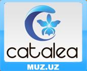 Catalea